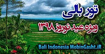تور بالی , تور لحظه آخری بالی , تور بالی ویژه نوروز , تور نوروزی بالی