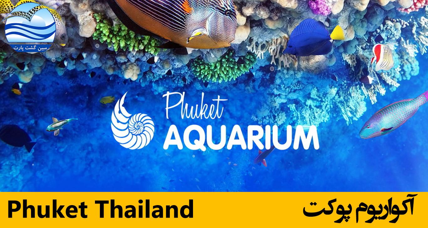 آکواریوم-پوکت-phuket-aquarium