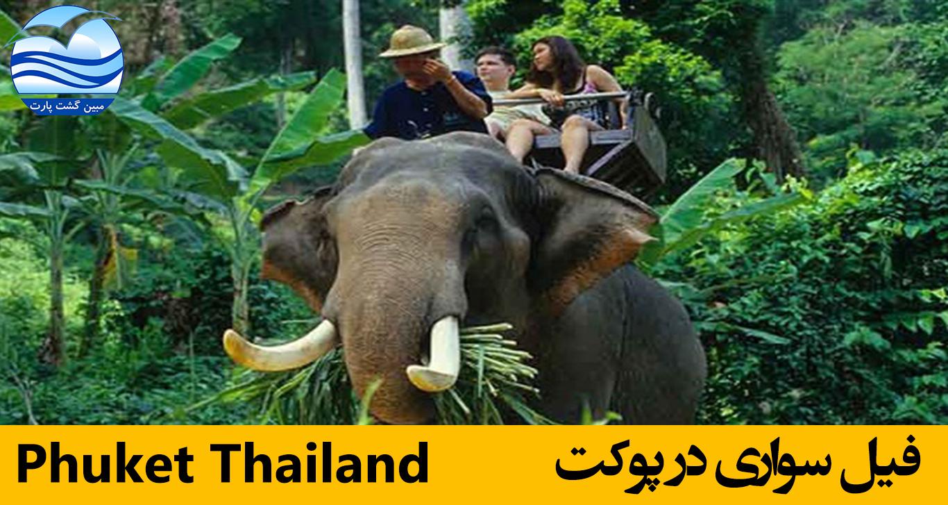 فیل-سواری-در-پوکت